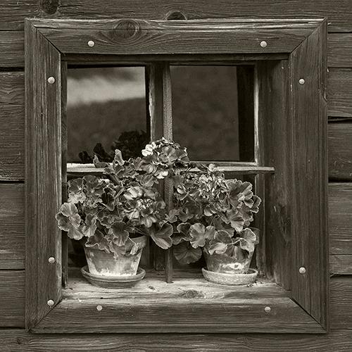 Fenster des Räucherhauses