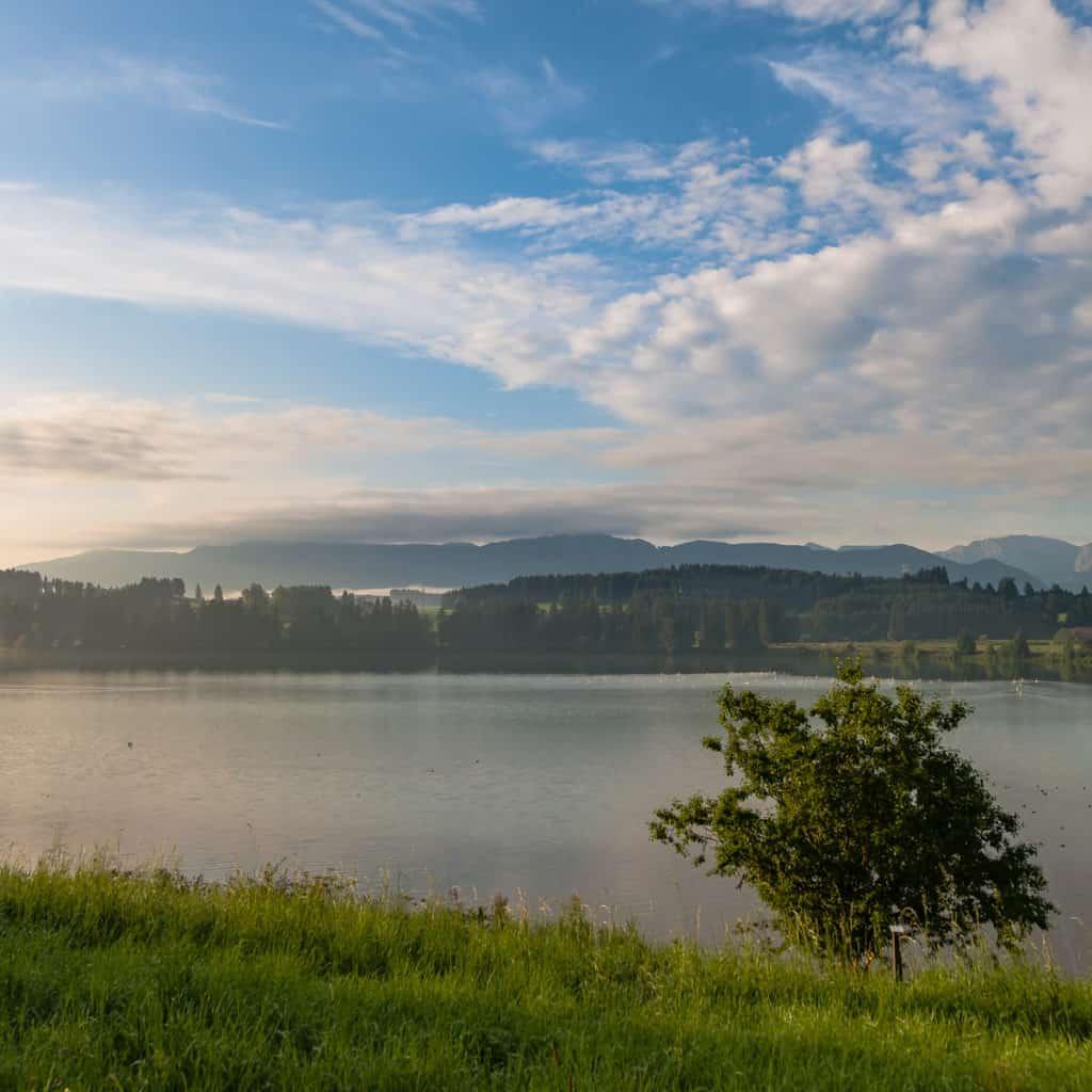Ein See bei Lechbruch mit einem kleinen Baum, blau-weißer Himmel und ein wenig Frühnebel